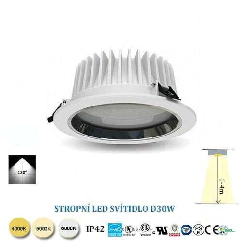 Stropní LED svítidlo D30W